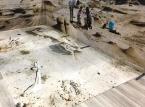 Revêtement de sol personnalisé