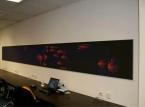 Cadre Wall Frame